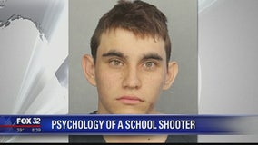 Psychology of a school shooter