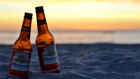 Porter, Indiana beach bans alcohol until September after fights, disorderly conduct and harassment