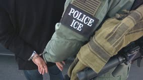 ICE chief: It will take 140 years to clear 'backlog' of illegal immigrants after US-Mexico border surge