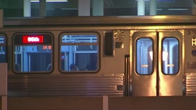Red Line resumes normal service after pole falls on Loyola stop