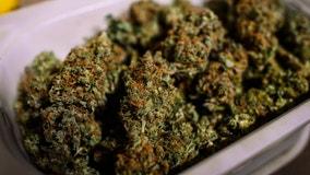 Pritzker announces lottery dates for marijuana dispensary licenses