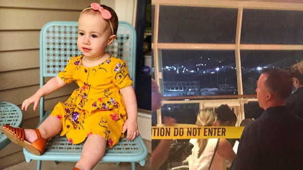 Grandfather to plead guilty in death of toddler who fell from cruise ship window: report