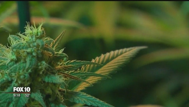 04537166-Medical_marijuana_in_Arizona_generated___0_20170128043050-408200
