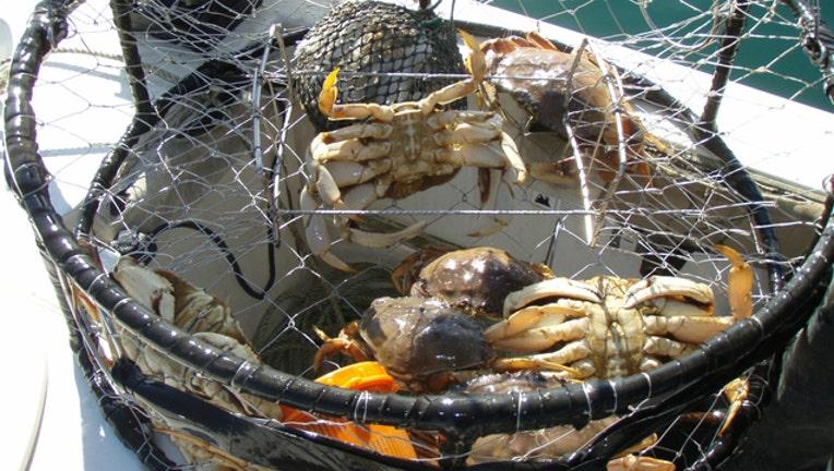10a7cf6f-Crabs