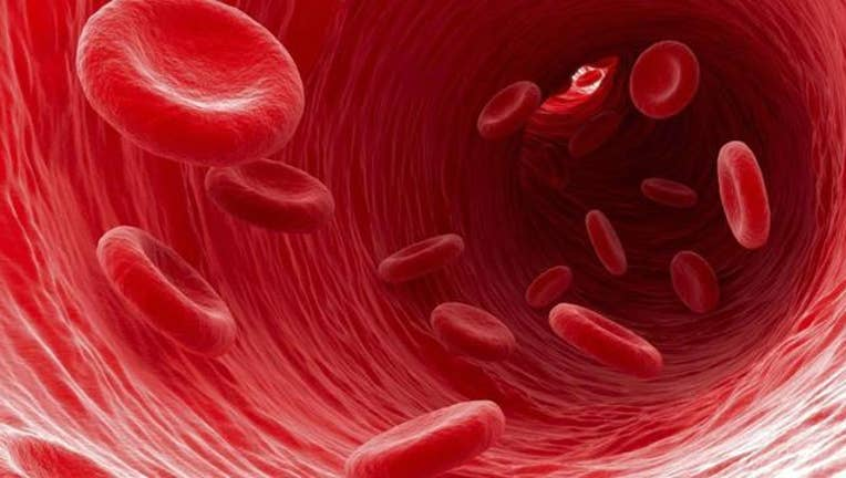 245c9cbd-red-blood-cells_1462550833572.jpg