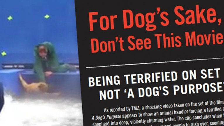 dog purpose_1485206860281.jpg