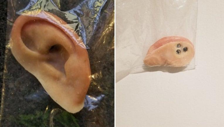 6a442c09-holmes beach prosthetic ear_1560947093587.jpg-401385.jpg