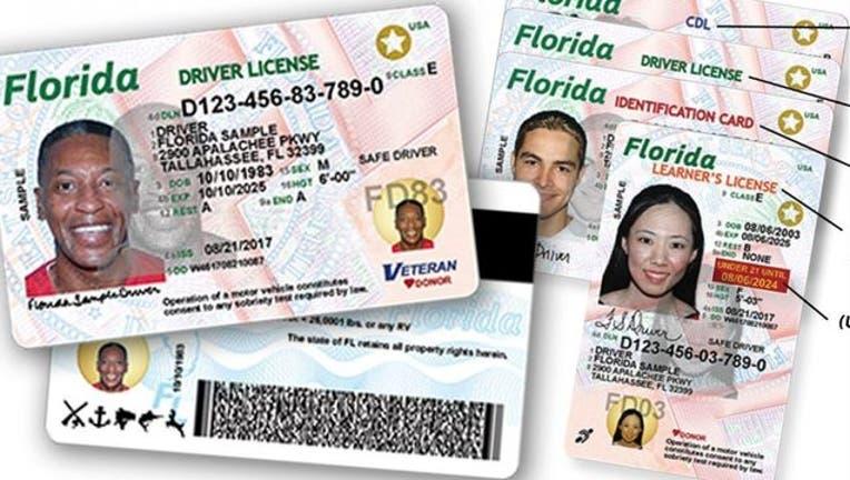 81606c20-Florida-Driver-License-_1553127220213.jpg