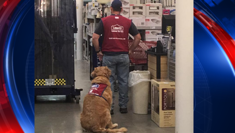texas lowes dog_1480993575829-409650.png