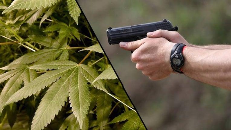 GETTY gun vs marijunan_1515963224133.png-402429.jpg