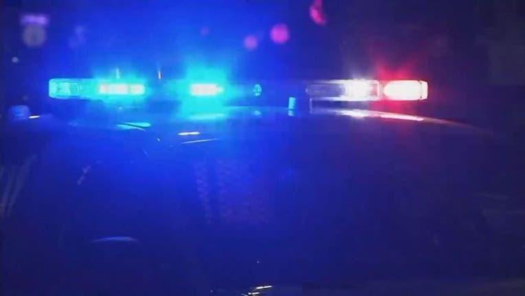 wjbk-generic police lights-082318-65880