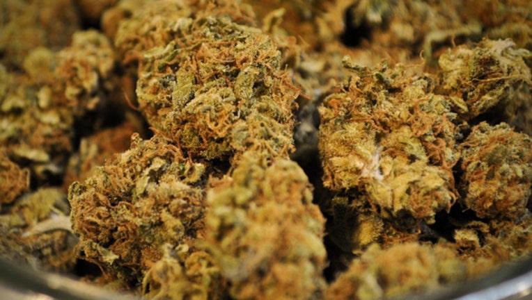 marijuana-dat-kush_1471953894950.jpg