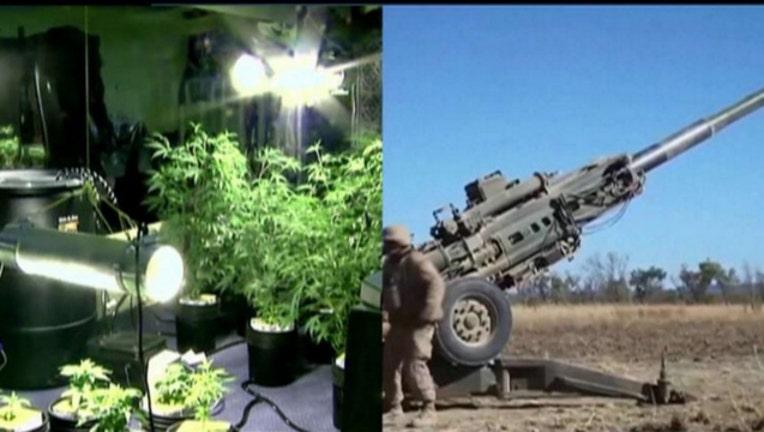 c1ceefc7-medical-marijuana-vets-ptsd_1461545316943.jpg