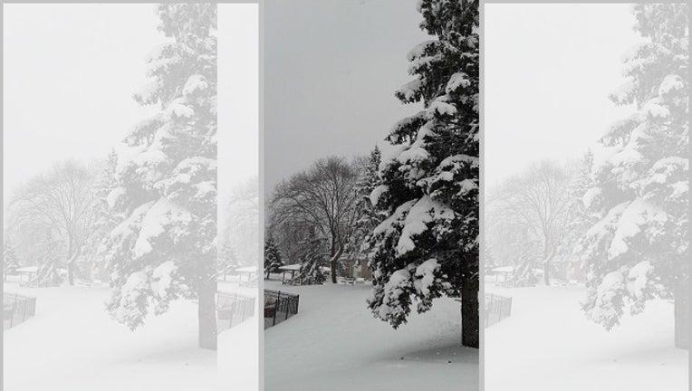 c445b502-snow_1517089515473-401096.jpg
