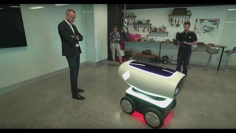 c453b784-pizza delivery robot