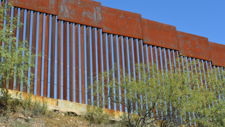 d07bc03f-deportation-wall_1463140642846.png