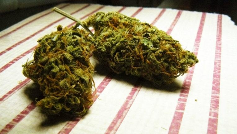 weed-pot-marijuana_1480445221760.jpg