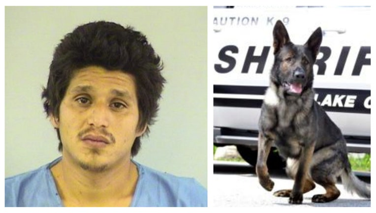 k9-arrest_1480356882646.jpg