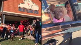 Dog that lived at shelter for more than 400 days finally gets adopted after human moves in