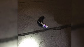 Aurora police free skunk's head from McFlurry cup