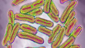 Restaurant in McHenry county linked to salmonella outbreak