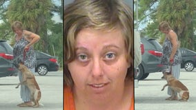 VIDEO: Florida woman arrested for kicking, pulling dog off the ground by leash