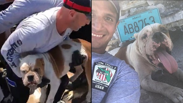 Gainesville firefighters rescue dog trapped under rubble in Bahamas after Hurricane Dorian