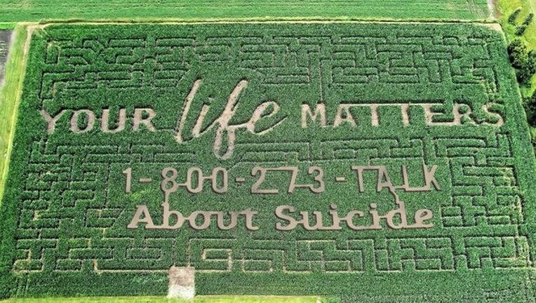 83576067-corn maze for web_1564753016363.png-402429.jpg