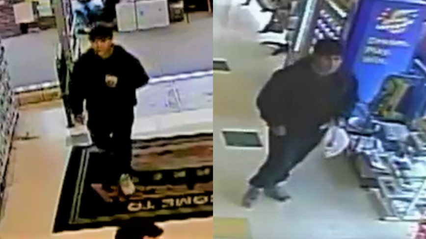 Palatine police release photos of arson suspect