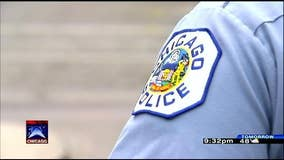 Eleven businesses burglarized in Gage Park