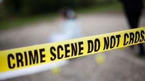 2 arrested after crashing stolen Robbins police car on Bishop Ford