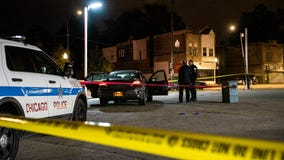 Boy, 3, shot in head in Back of the Yards