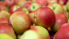 Potential listeria contamination leads to apples recall in 8 states