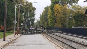 Downed tree, power lines cleared from Metra tracks in Beverly