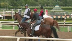 Horse euthanized after sustaining injury while training at Santa Anita Park