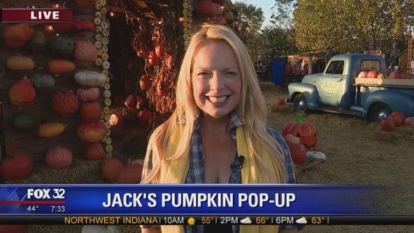 Jack's Pumpkin Pop-Up returns to Chicago's Wicker Park neighborhood
