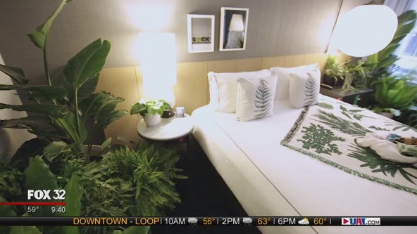 Chicago's first-ever plant pop-up hotel takes over Kimpton Gray Hotel