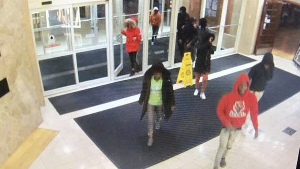 Group wanted for stealing purses, robbing woman at Northbrook Court mall: police