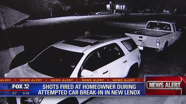 Shots fired at New Lenox homeowner during car break-in