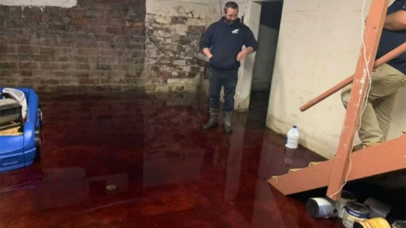 Family's basement fills with 5 inches of animal blood