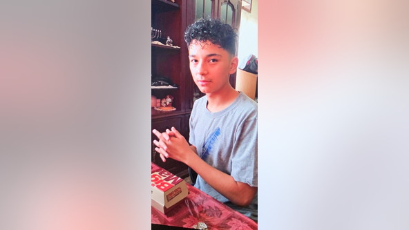 Boy, 15, missing from Arlington Heights may be in danger