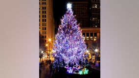Chicago selects official 2019 Christmas tree