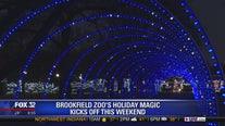 Brighten up the holidays at Brookfield Zoo's Holiday Magic