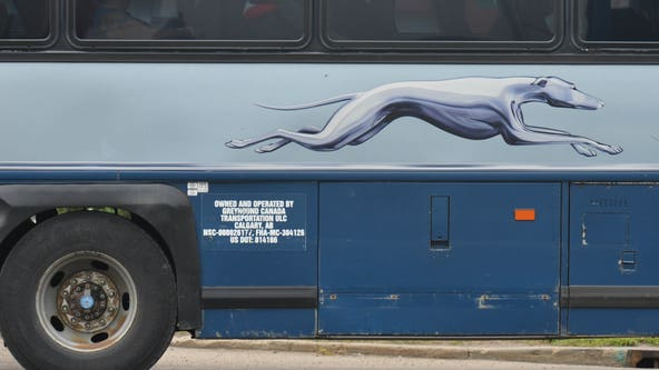 Greyhound to stop allowing immigration checks on its buses