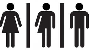 Transgender students secure unrestricted locker room access in Palatine school district