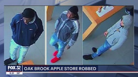 Thieves grab $10K of iPhones from an Oak Brook mall Apple Store: police