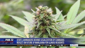 The state of recreational marijuana in Illinois one week after legalization