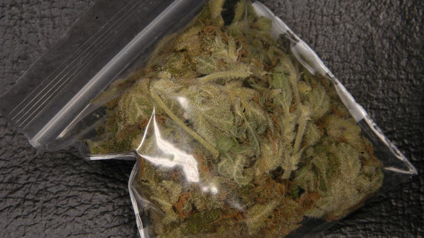 Weed stolen from 'amnesty box' at Midway Airport