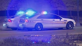 Death of woman hit by state trooper in I-57 crash ruled a homicide: autopsy
