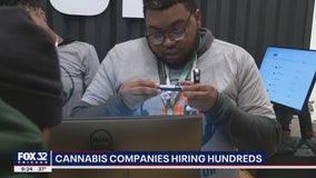 Illinois cannabis companies hiring hundreds as sales net $10M in tax revenue in 1st month